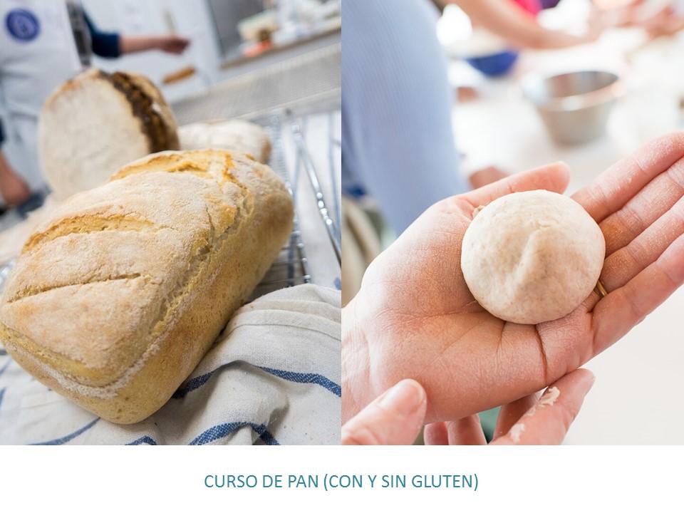 PORTADA CURSO DE PAN CON Y SIN GLUTEN