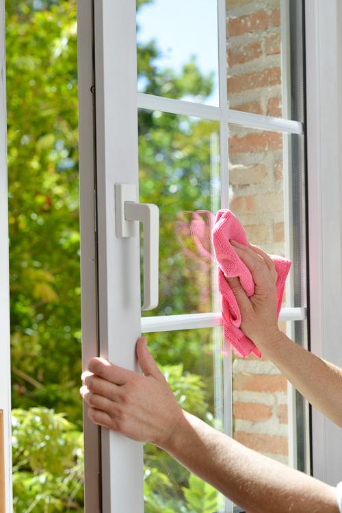limpieza de primavera The Home Academy 1
